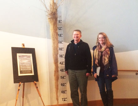 Bill Stewart and student standing next to 8-foot-tall stalk of grass